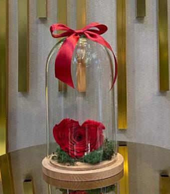 Dehidrirana-ruža-srce-u-staklenom-zvonu