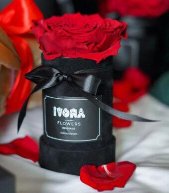 flower-box-dehidrirana-ruza-online-shop-cvecara-ivona.jpg5